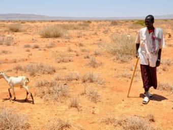 A Klímaváltozás, Afrika és A Migráció