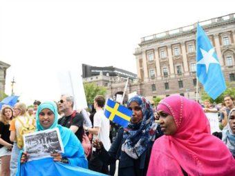 Svédországban Is Megerősödhetnek A Bevándorláskritikus Pártok