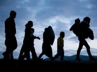 Nehéz értelmezni, Miről Szól A Migrációs Csomag